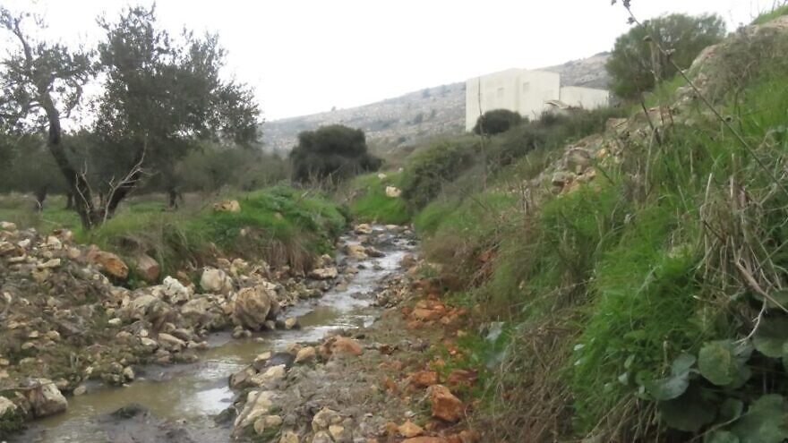 Untreated sewage runs past the shuttered treatment facility at Ofra