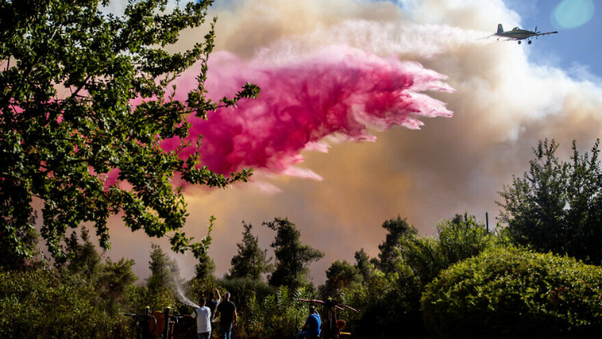 Israeli firefighters and citizens try to extinguish a fire in a forest near Beit Meir, outside of Jerusalem, on Aug. 15, 2021. Photo by Yonatan Sindel/Flash90.