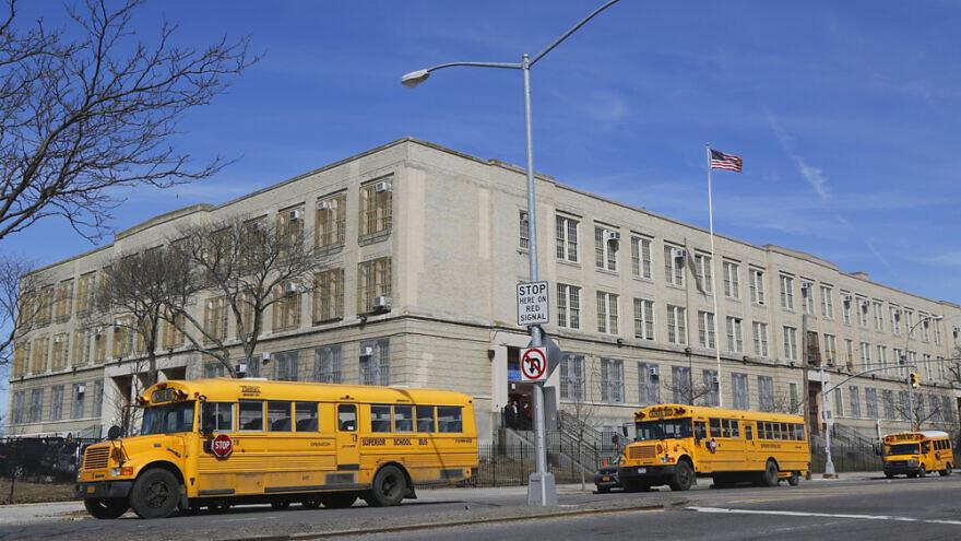 Buses in the front of a public school in Brooklyn, N.Y. Credit: Leonard Zhukovsky/Shutterstock.