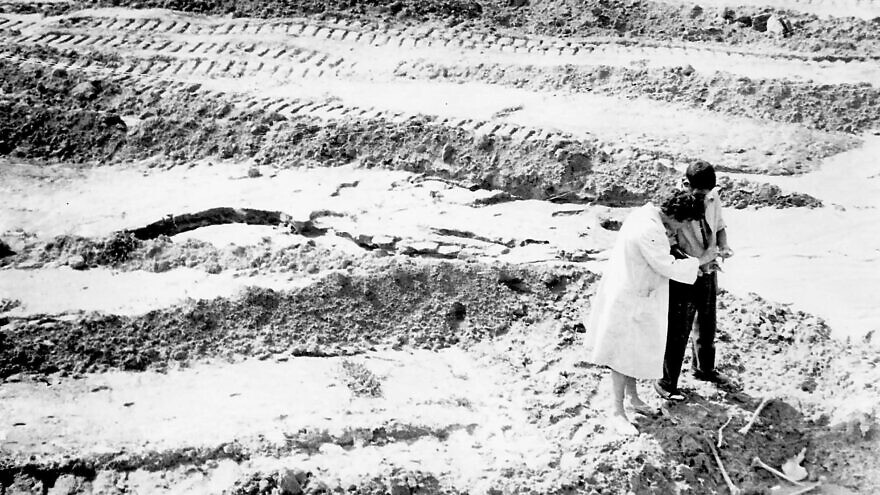 Babi Yar: The Emmanuel (Amik) Diamant Collection. Credit: The Central Archives for the History of the Jewish People at the National Library of Israel.