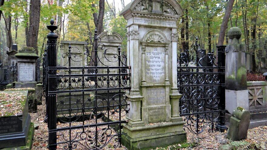 Powązki Jewish Cemetery in Warsaw, Oct. 25, 2012. Credit: Jolanta Dyr via Wikimedia Commons.