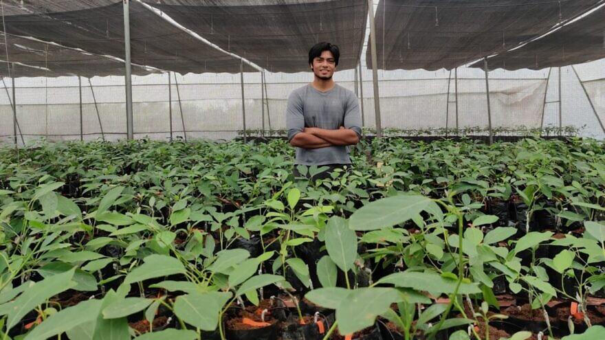 Harshit Godha in his Indo-Israel Avocado nursery. Photo by Tanmay Godha.