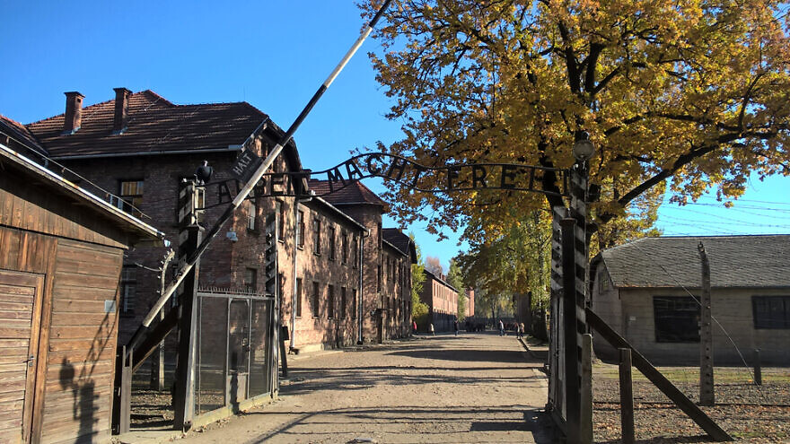 Auschwitz-Birkenau concentration camp. Credit: Milan Korinek/Shutterstock.